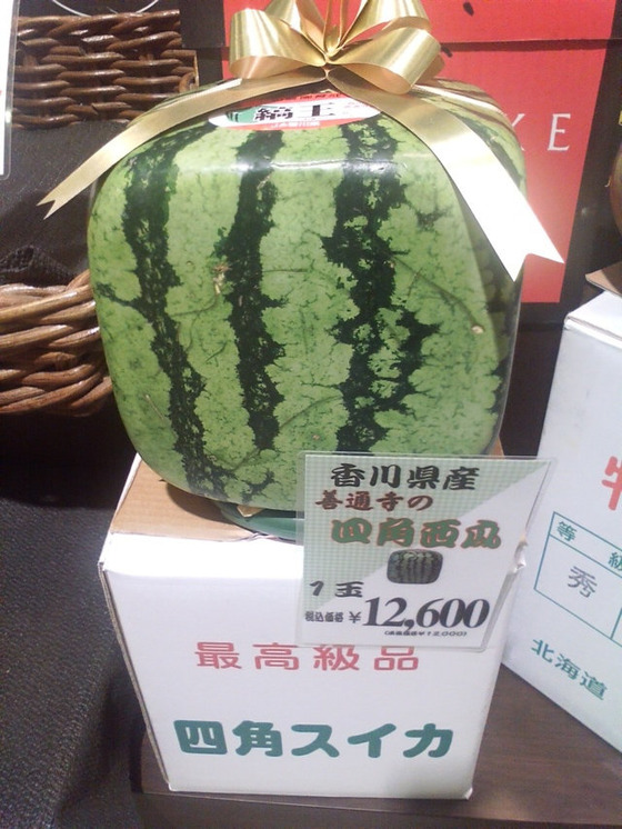 日本のスイカがヤバ過ぎると話題になってる写真