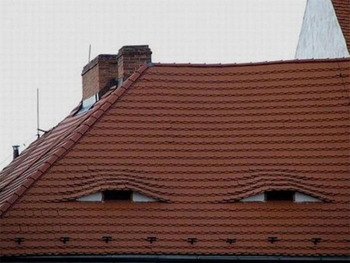 視線を感じると思ったら顔っぽい何かの写真