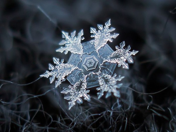 シンプルなDIYカメラキットでとらえた驚くべき雪の結晶