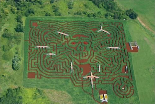 とうもろこし畑で作られたアートが凄い写真