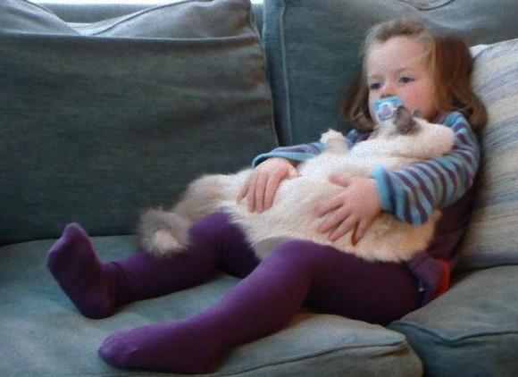 動物と人間の子供が仲良くしている可愛い写真