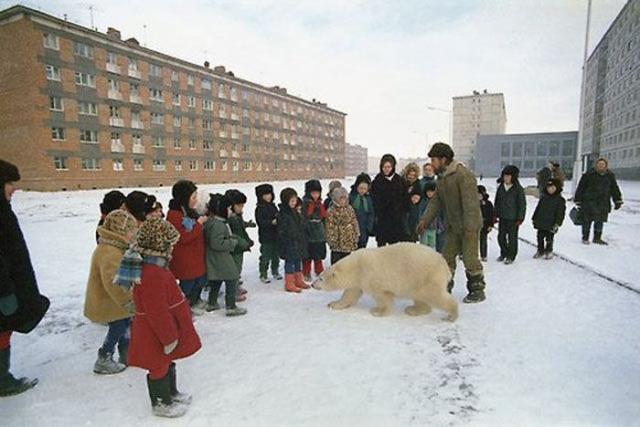 ロシアで見られる日常風景のオモシロ写真