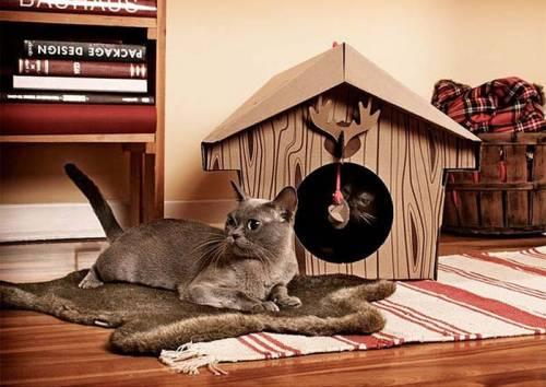 可愛い家の中にある猫の家