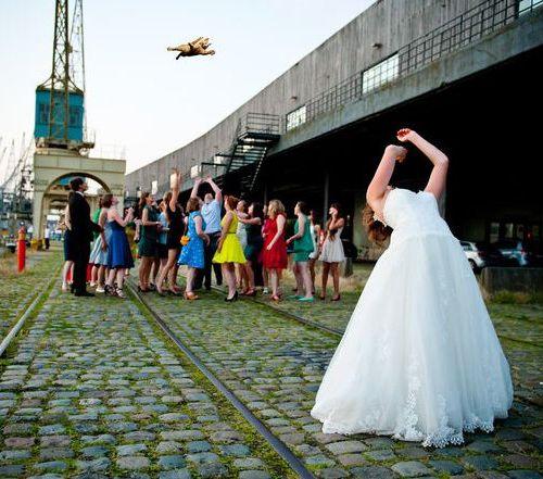 結婚式で花嫁が投げるブーケを「猫」に置き換えた写真