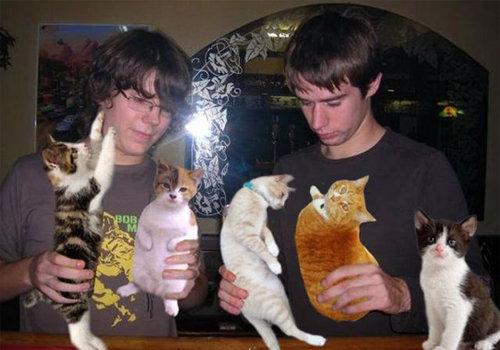 お酒を猫ちゃんに置き換えてごまかした写真