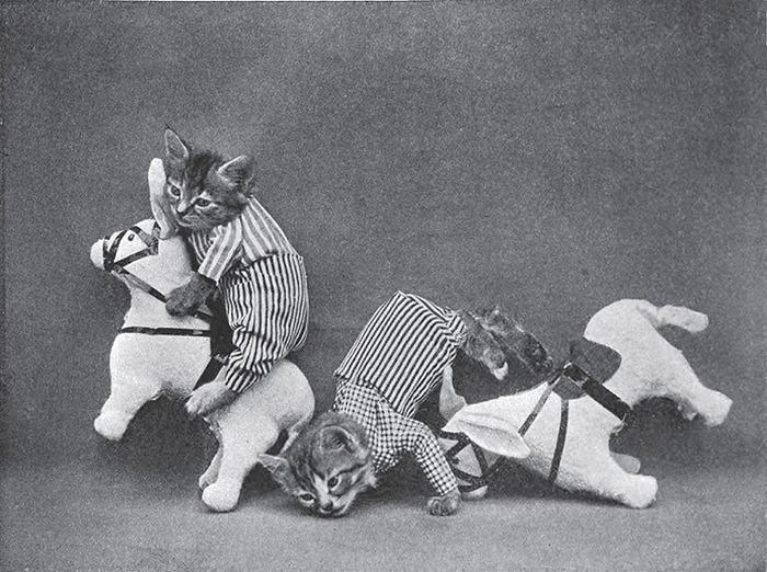 犬猫を擬人化したレトロな写真