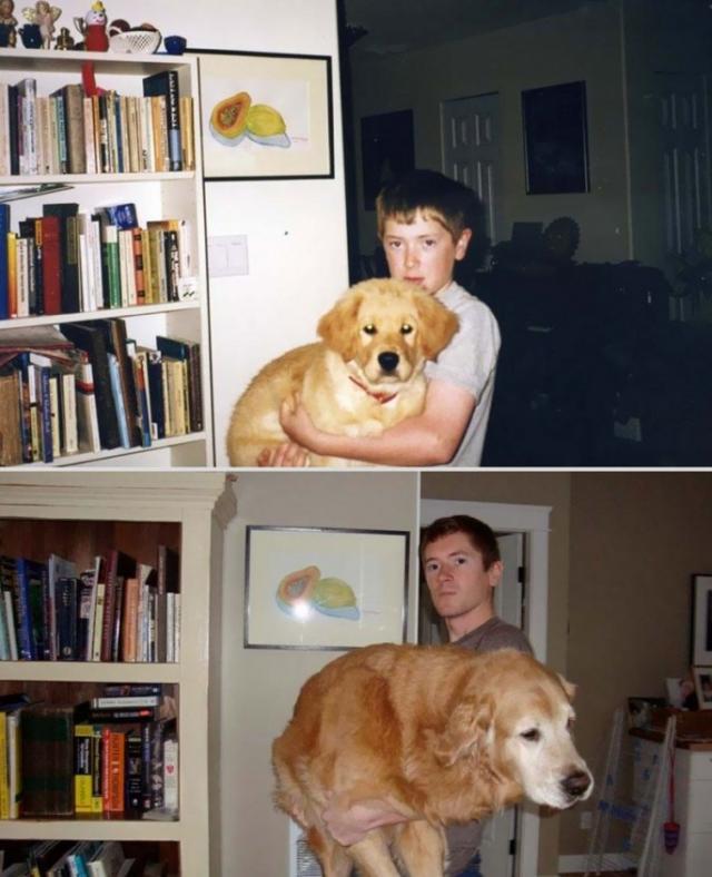 愛しいペットと一緒に撮影した、過去と現在の写真