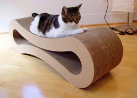 猫のために設計されたインテリアや小物が可愛い写真